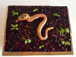 Tortas berniukui gyvatė