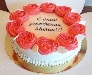 tortas proginis merginai, moteriai