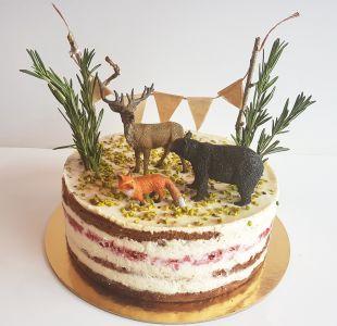 tortas proginis miškas